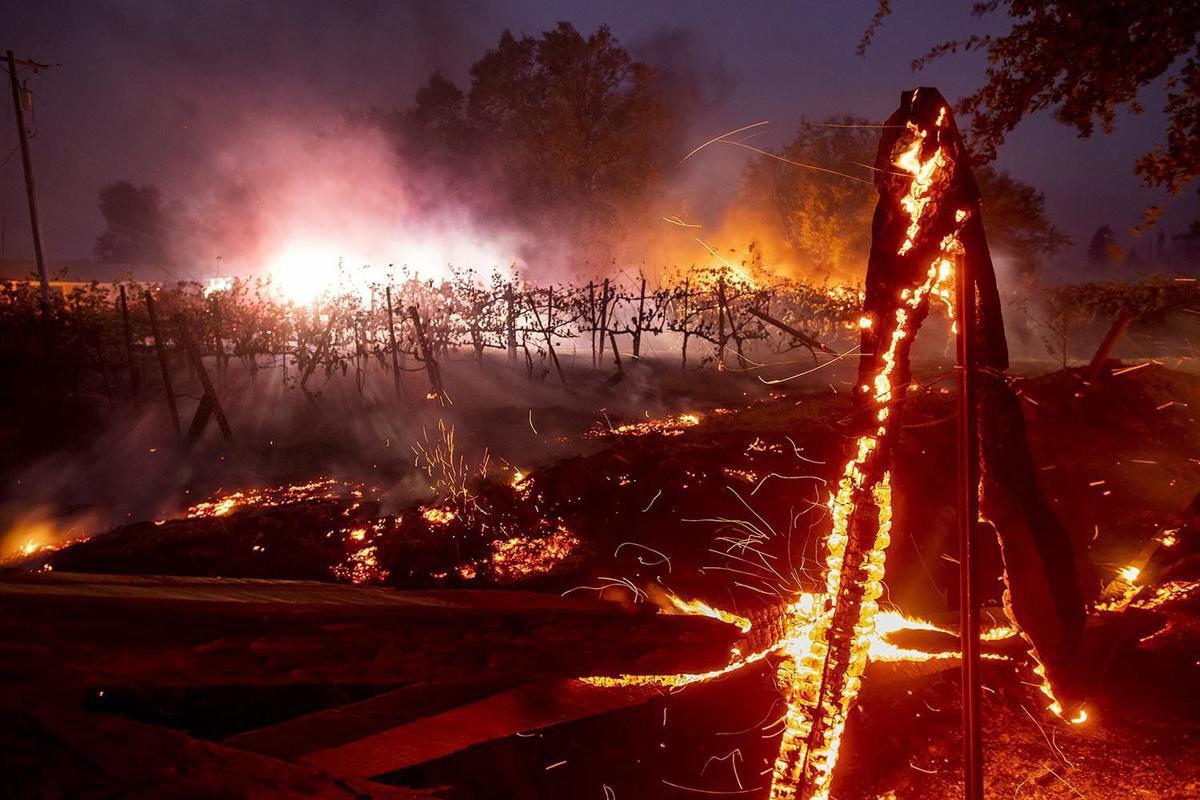Пожары на западном побережье США наносят огромный вред экологии и людям