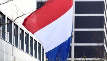 Правительство Нидерландов подало в отставку из-за скандала с пособиями