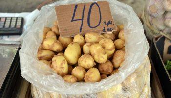 Украина от производства микропроцессоров, закончила нехваткой картошки в хранилищах