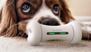 Умная интерактивная косточка-игрушка играет с вашей собакой (видео + фото)