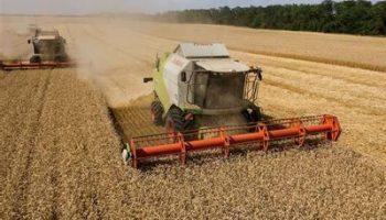 Экспорт продовольствия впервые в новейшей истории России превысил импорт в 2020 году