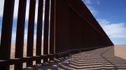 Раненый при незаконном пересечении границы США россиянин признал вину
