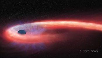 Астрономы впервые увидели черную дыру, обернутую звездой